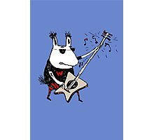 Wild Guitar Wolf  Photographic Print