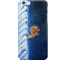 Leaf Fall iPhone Case/Skin