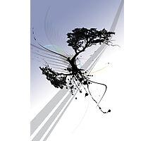 Arashi (dawn) Photographic Print