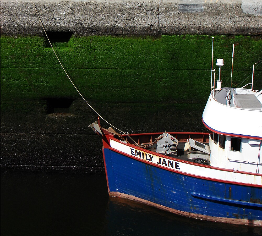 Emily Jane in the Locks by Honario