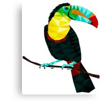 Terry The Toucan Canvas Print