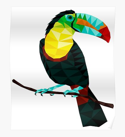 Terry The Toucan Poster