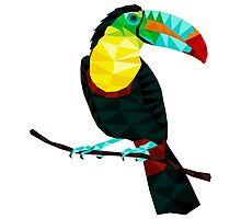 Terry The Toucan Photographic Print