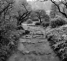 the path to peace by vesa50