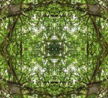 Woods Print- Lake District  Sticker
