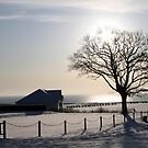 Sewerby Cricket Club in Snow by Merice  Ewart-Marshall - LFA