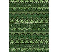 Green Plant Aztec Pattern Photographic Print