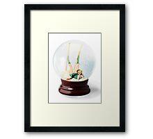 Snow Globe 3 Framed Print