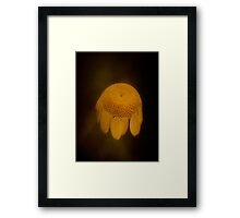 Lost In Space.... Framed Print