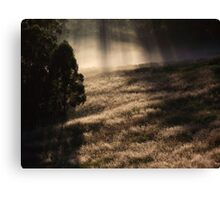 "'Morning Grass"" Canvas Print"