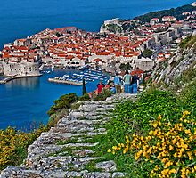 Looking at Dubrovnik by vadim19