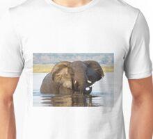 Elephant ... Bronze Beauty Unisex T-Shirt