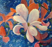 Magnolia  by Marita McVeigh