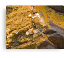 Quartz and Lichen, Sulphur Creek, Tasmania, Australia. Canvas Print