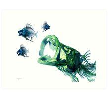 Snook Chasing Pinfish Art Print