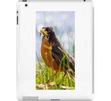 bird species iPad Case/Skin