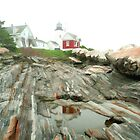 Pemaquid Light by Darren Fisher