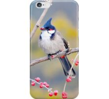 Nature Birds Tree iPhone Case/Skin
