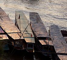 Fishing Boats on the Mekong by EveW