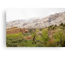 Rain in the Canyon Canvas Print