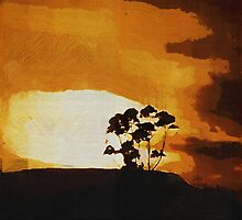 South African Sky by RC deWinter
