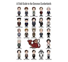 A Field Guide to the Common Cumberbatch (print/poster/card) Photographic Print
