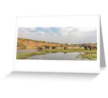 Elephants crossing the Chobe River Greeting Card