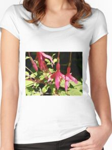 Delicate Blossoms, My Garden, Tumut, Australia. Women's Fitted Scoop T-Shirt
