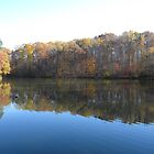 Autumn Reflections by Jaclyn Hughes