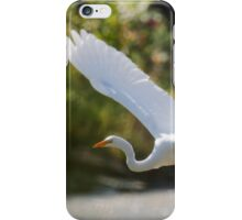 Fly-By iPhone Case/Skin