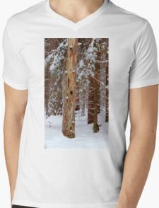 Snow covered Pines dedicated to life's simple pleasures Mens V-Neck T-Shirt