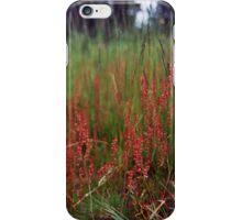 Wild dock iPhone Case/Skin