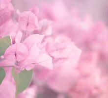 Sweet, pink dreams by Eliza1Anna