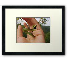 Green Vine Snake Framed Print