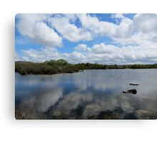 Reflections in the Burren, Mullaghmore Canvas Print