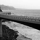 The Sea Cliff Bridge, NSW Australia by TMphotography