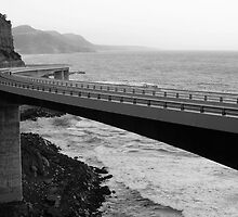 The Sea Cliff Bridge, NSW Australia by TMphotography