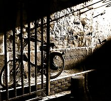 Light and Bycicle by 1more photo