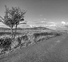 Mullaghmore mountain view by John Quinn