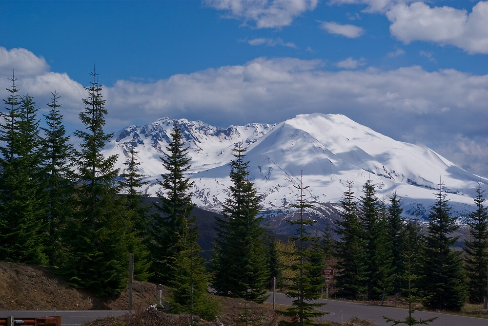 Mt St Helen, revisited 30 years later by Sharoncr