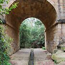 Lennox Bridge, Blue Mountains NSW by Catherine Davis