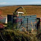 Harvesting, Wigtownshire, Scotland by sarnia2