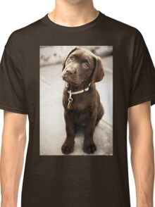 Aphrodite: the world's cutest puppy Classic T-Shirt
