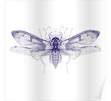 Overlaid Insect Print Poster