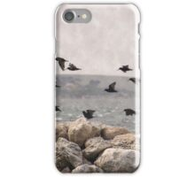 Oyster Catchers iPhone Case/Skin