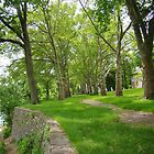 Path along the Delaware by reindeer