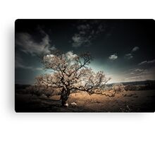 The Magic Tree Canvas Print