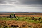 The Cathedral on the Moor by DonDavisUK