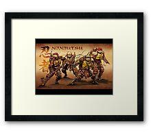 TMNT NINJUTSU Framed Print