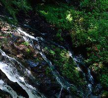 The Stream Runs Through  by mmariephoto